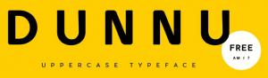 dunnu font