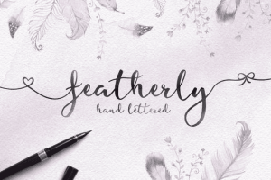 feathery font